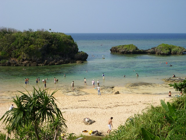 iriomote-island-69650_640